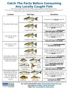 FishConsumptionAdvisoryTable1222111